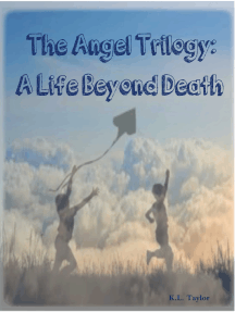 The Angel Trilogy: A Life Beyond Death