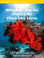 Wherever You Go, There's No Place Like Home