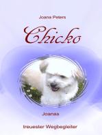 Chicko - Joanas treuester Wegbegleiter