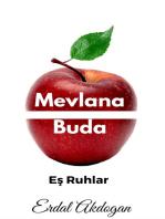 Mevlana ve Buda