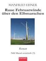 Raue Februarwinde über den Elbmarschen