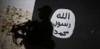 Where Do ISIS Fighters Go When the Caliphate Falls?