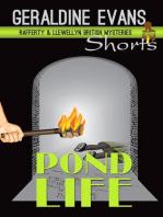 Pond Life - Short Story