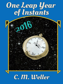 One Leap Year of Instants (2016)