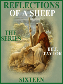 Reflections Of A Sheep: The Series - Book Sixteen