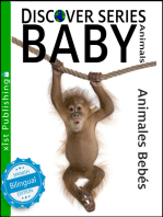 Baby Animals / Animales Bebés