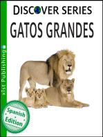 Gatos Grandes: (Big Cats)