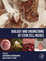 Biology and Engineering of Stem Cell Niches