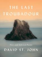 The Last Troubadour