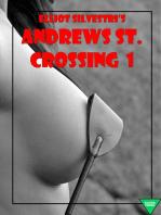 Andrews St. Crossing 1