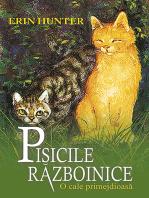 Pisicile războinice. Cartea a V-a - O cale primejdioasă