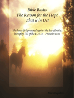 Bible Basics - The Reason for the Hope That Is In Us!