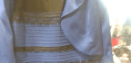 Here's Why We Disagreed About 'the Dress'