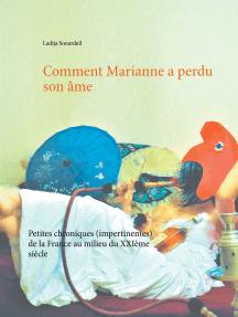 Comment Marianne a perdu son âme: Petites chroniques (impertinentes) de la France au milieu du XXIème siècle