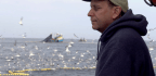 What Fish Is Good For Me And The Planet? New Documentary Explores