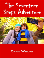 The Seventeen Steps Adventure