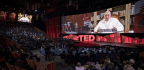 In Surprise TED Talk, Pope Francis Asks The Powerful For 'Revolution Of Tenderness'