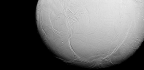 NASA Finds Signs of Life on a Saturnian Moon