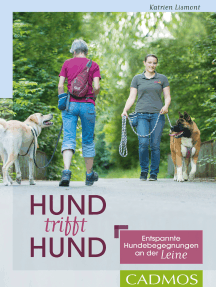 Hund trifft Hund: Endspannte Hundebegegnungen an der Leine
