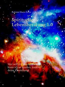 Spirituelle Lebensberatung 1.0: Wer will ich sein und wie kann ich es werden, ändere deine Einstellung!