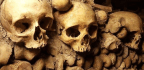 How Plagues Help Scientists Puzzle out the Past