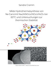 Milde Hydrothermalsynthese von Na-Cancrinit Na8[AlSiO4]6(NO3)2(H2O)4 bei 60 °C und Untersuchungen zur thermischen Stabilität: Diplomarbeit 2009