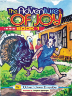 The Adventures of Joy