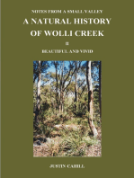Notes from a Small Valley A Natural History of Wolli Creek II Vivid and Beautiful