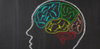 Has Modern Experience Changed The Human Brain?