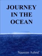 Journey In The Ocean