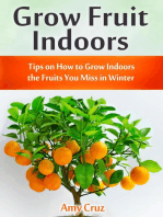 Grow Fruit Indoors