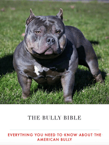 Read The Bully Bible Everything You Need To Know About The