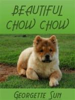 Beautiful Chow Chow