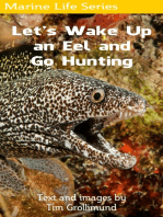 Let's Wake Up an Eel and Go Hunting