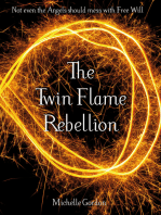 The Twin Flame Rebellion
