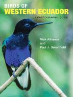 Birds of Western Ecuador