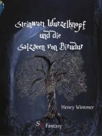 Steinwart Wurzelknopf und die Salzseen von Birudur