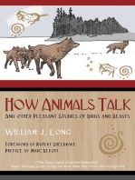 How Animals Talk