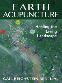Earth Acupuncture: Healing the Living Landscape
