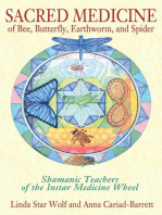 Sacred Medicine of Bee, Butterfly, Earthworm, and Spider