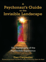 A Psychonaut's Guide to the Invisible Landscape