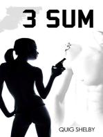 3 SUM