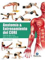 Anatomía y entrenamiento del core: Guía de ejercicios para un torso perfecto