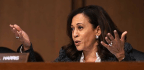 Kamala Harris Goes to Washington