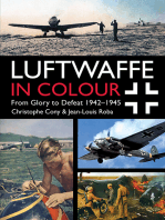 Luftwaffe in Colour