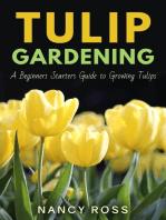 Tulip Gardening