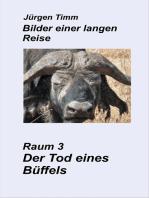 Raum 3 Der Tod eines Büffels