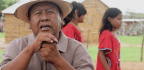 'En Mi Idioma' Allows Colombian Indigenous Communities to Contribute Online Language Lessons