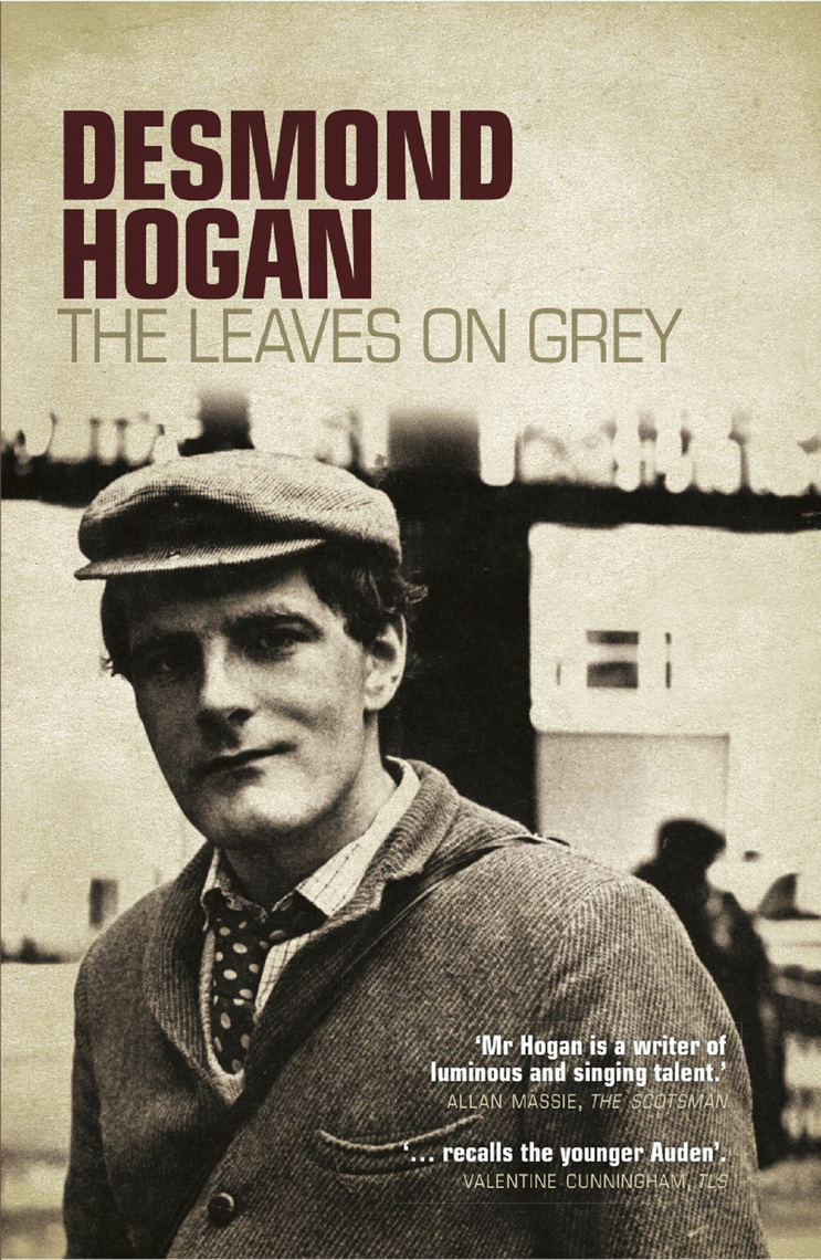 Read The Leaves on Grey Online by Desmond Hogan | Books