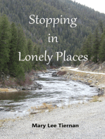 Stopping in Lonely Places